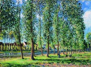アルフレッド・シスレー「モレのポプラ並木」(1888年)